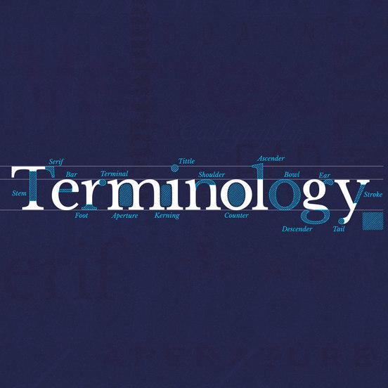 Aprende y domina la terminología tipográfica con Type Terms