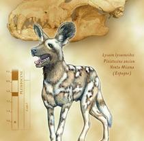 PaleontoLogía. Un proyecto de Ilustración de Lopekan :: - 05-04-2011