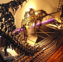 Exposiciones para el Museo Nacional de Ciencias Naturales. Un proyecto de Diseño, Instalaciones e Ilustración de Jorge Fuente Lasala - Miércoles, 13 de julio de 2011 09:48:55 +0200