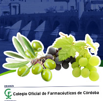 Roller Jornadas Farmacéuticas de Alimentación. A Design, and Advertising project by dramaplastika - 26-10-2011