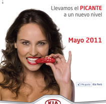 Picante Picanto. A Design, and Advertising project by Diana Gomez Salas         - 22.02.2012