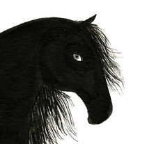 the black stallion. A Design&Illustration project by Coco Escribano         - 03.06.2012