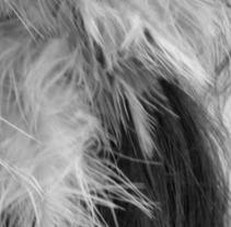 clave alta. Un proyecto de Fotografía de Andrea Goiez         - 17.07.2012