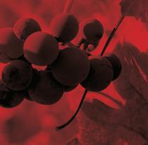 works for Wineries. Um projeto de Design e Publicidade de Alba Dizy         - 17.08.2012