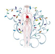 Nutricion Practica. Un proyecto de Diseño, Ilustración y UI / UX de alvaro herranz bordehore         - 14.11.2012
