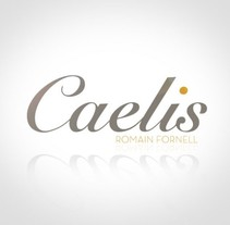 Caelis - Identidad Corporativa. A Design project by Andreu Rami Bastante         - 09.02.2013
