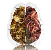 Fobias: cerebro y corazón.. Um projeto de Design, Ilustração, Publicidade, Motion Graphics e UI / UX de Esteban Muñoz Diezma         - 11.11.2013
