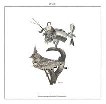 Monsterkompendium. Bestiario ilustrado. A Art Direction, Editorial Design&Illustration project by Celsius Pictor  - Mar 11 2014 12:00 AM