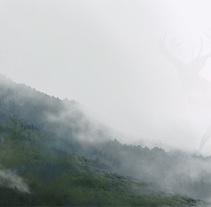 Natura. Un proyecto de Ilustración, Bellas Artes y Pintura de Jaime Sanjuan Ocabo - 28-08-2014