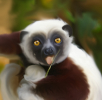 lemur. A Fine Art, and Graphic Design project by papa papa - 02-09-2014
