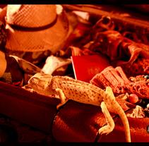 Descubre África. Um projeto de Publicidade, Fotografia e Design gráfico de Esther Herrero Carbonell         - 09.05.2011