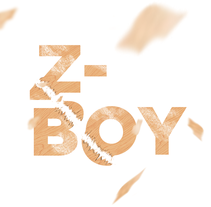 Z-Boy. A Graphic Design project by Ricard Garcia         - 01.01.2015