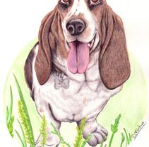 Mascotas. Um projeto de Ilustração de David Fortino         - 10.03.2015
