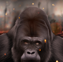 Gorila. A Fine Art, Illustration, and Painting project by Jaime Sanjuan Ocabo - 03.16.2015