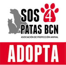 Roll-up SOS4patas. A Graphic Design project by Laura Misidro         - 09.10.2014