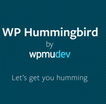 WP Hummingbird. A Web Development project by Ignacio Cruz Moreno         - 14.02.2016