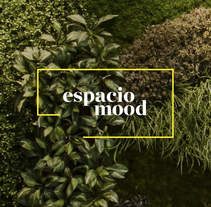 Espacio Mood Identity. A Br, ing, Identit, Art Direction, and Web Design project by Rebeka  Arce - May 02 2016 12:00 AM