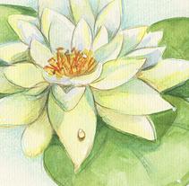 Herbario de flores. Un proyecto de Ilustración de Antia Otero Couselo - Jueves, 24 de noviembre de 2016 00:00:00 +0100