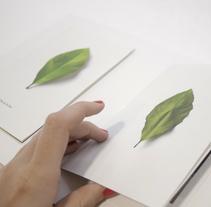 Hacia la luz. Hasta la ausencia. Un proyecto de Fotografía, Diseño editorial y Diseño gráfico de Juan Jareño  - 04-12-2016