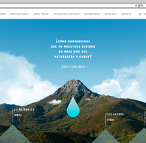 Web corporativa para Liquats Vegetals. . Un proyecto de Desarrollo Web de rseoaneb - 14-11-2016