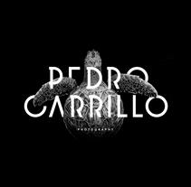 Pedro Carrillo Photography — Branding. Un proyecto de Dirección de arte, Br, ing e Identidad y Diseño gráfico de Sara Moreno - 13-10-2014