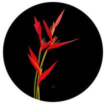 Ilustración 'Heliconias'. A Design, Illustration, Graphic Design, and Vector illustration project by Sandra Martínez Arroyo         - 20.12.2017