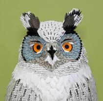 Wise Owl. . Um projeto de Ilustração, 3D, Design de personagens, Design editorial e Papercraft de Diana Beltran Herrera         - 29.01.2018